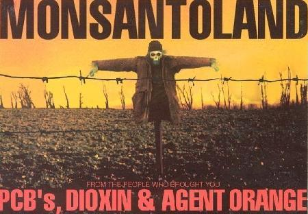 Monsanto's Involvement With Agent Orange - 40 Years After the Vietnam Conflict