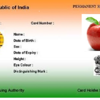 Apple, as per UIDAI is resident of India given #aadhar Number #WTFnews
